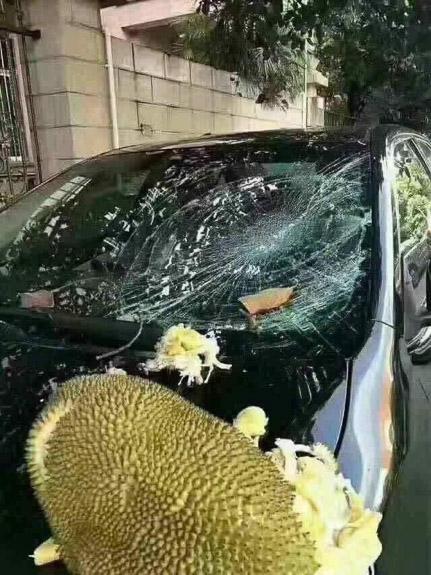 Особенности аренды авто в Таиланде