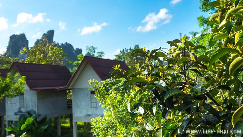 Национальный парк Као Сок, цены на отели