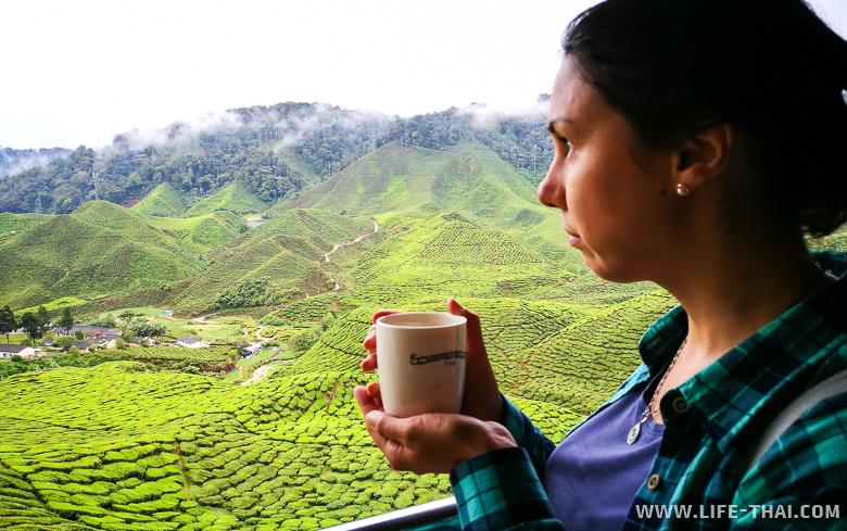 Пью чай в кафе с прекрасным видом