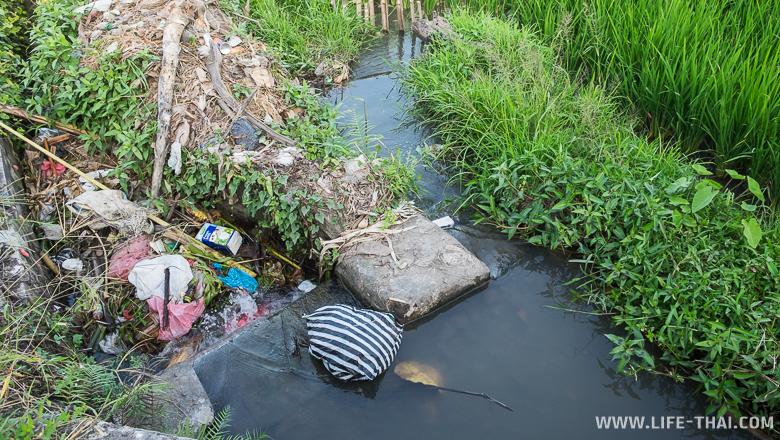 Мусор в оросительной канаве около рисовго поля, Бали