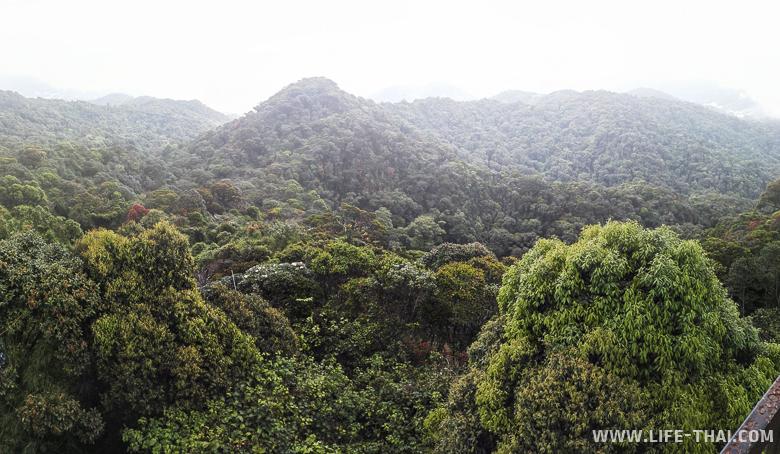 Панорама окресностей со смотровой площадки на горе Бринчанг, Малайзия