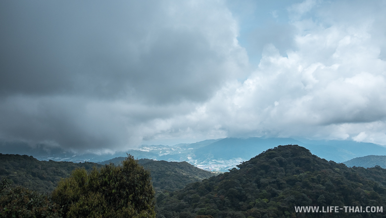 Вид с вершины Бирнчанг на Камерон Хайлендс, Малайзия