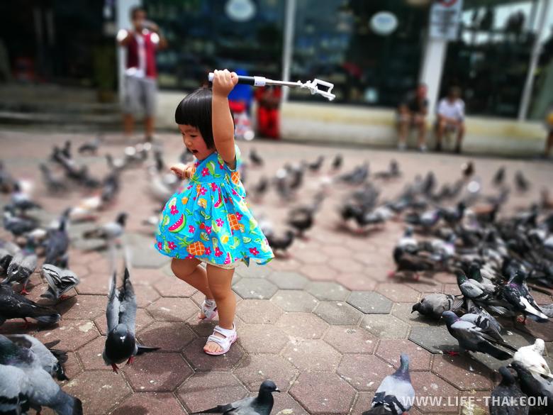 Девочка охотится на голубей, пещеры Бату, Малайзия
