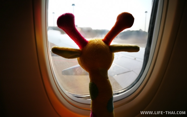Жирафик летит в Индонезию