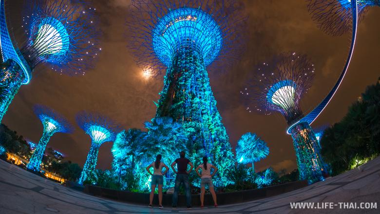 Супер-деревья в садах у залива ночью