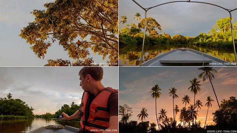 Речное сафари на острове Борнео, Малайзия