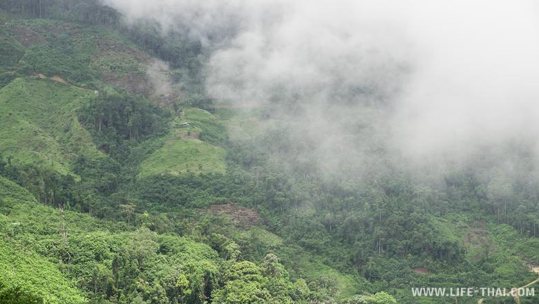 Зелёный слон горы, на который наползает туча
