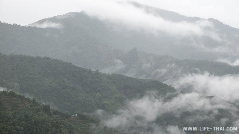 Горы около Кота-Кинабалу, штат Сабах, Борнео
