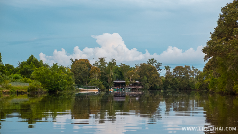 Река Клиас, Сабах, Малайзия
