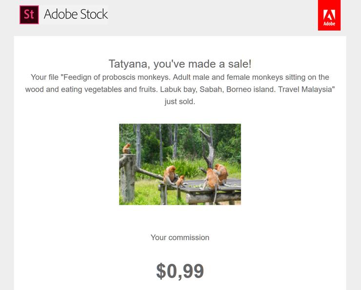 Первая продажа на Адоб Стоке