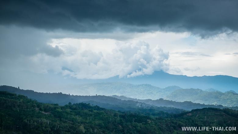 Гора Кинабалу с чайных плантаций Сабах, Борнео, Малайзия