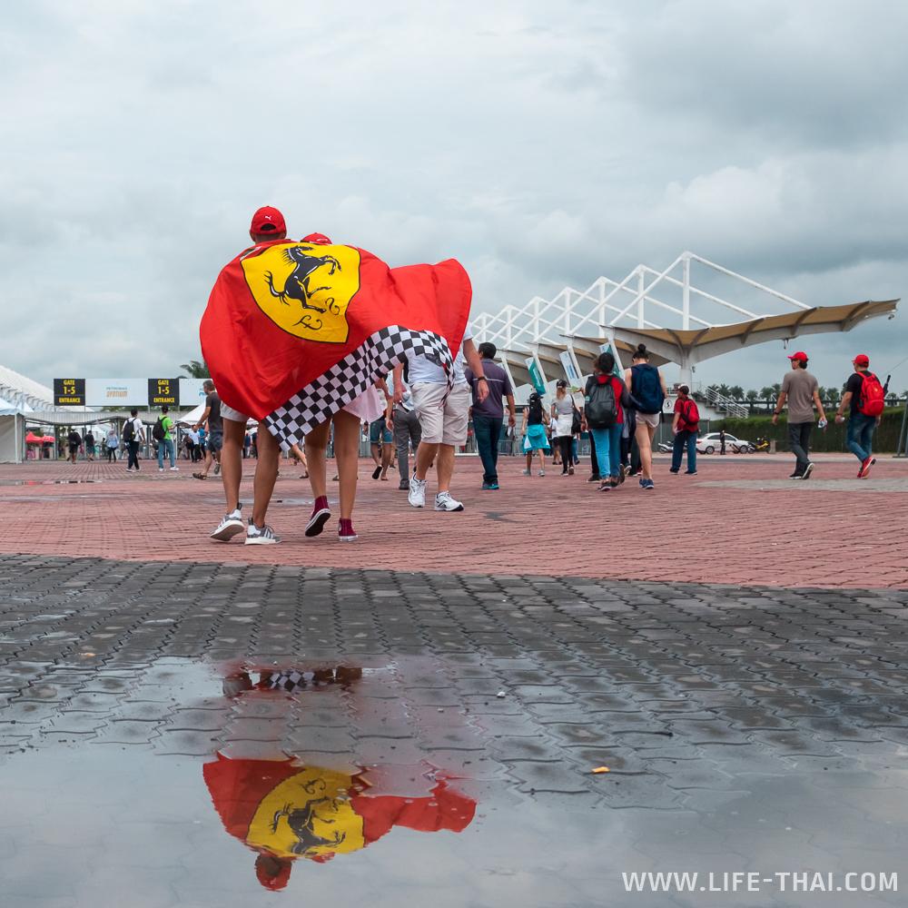 Болельщики Феррари завернулись во флаг команды