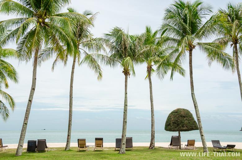 Фото пляжа Ченанг на острове Лангкави, Малайзия