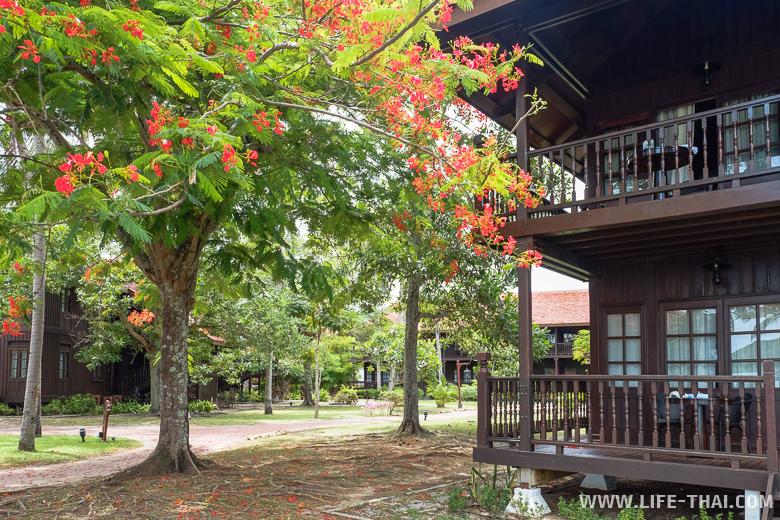 Отель на первой линии на пляже Ченанг. Деревянные шалле в саду
