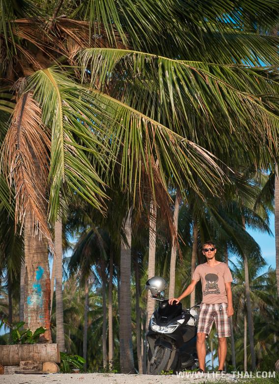 Кокосовые пальмы и Игорь
