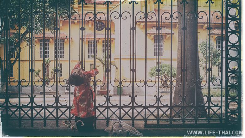 Девочка висит на забре в Ханое