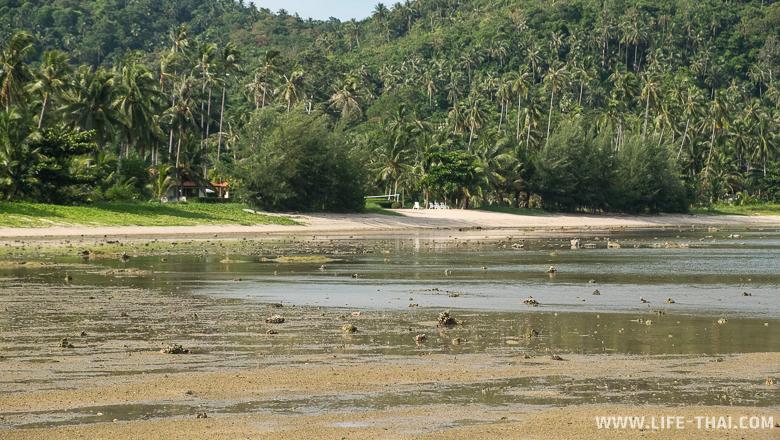 Отливы на южных пляжах Самуи