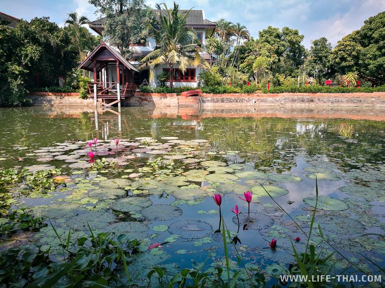 Жизнь в Чиангмае. Обустройство быта в Таиланде