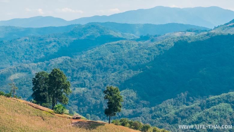 Окрестности Мэсалонга - живописные виды и горы, горы, горы