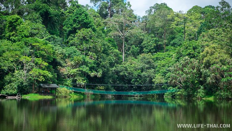 Озеро, на которое целится фотограф