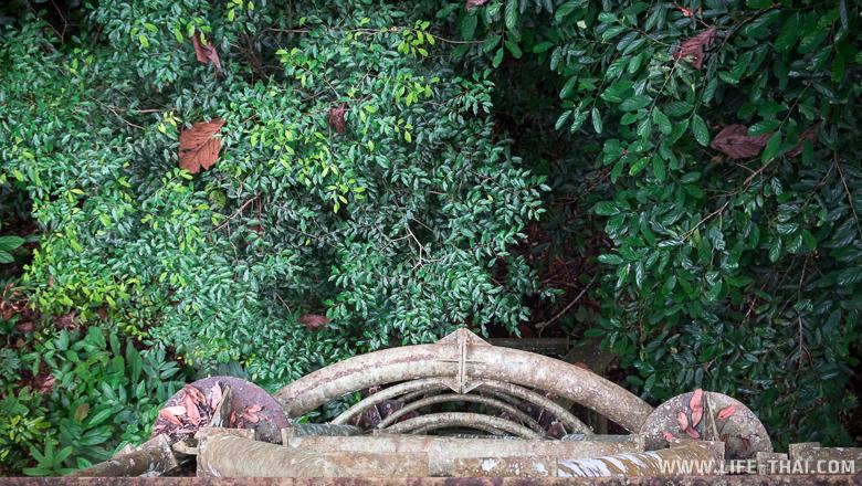 Canopy walkway в джунглях Борнео, Малайзия