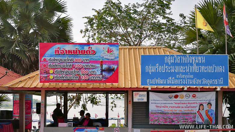 Стоимость аренды лодки, чтобы покататься по озеру лотосов в Таиланде