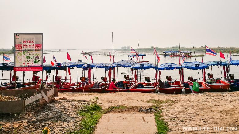 Шестиместные лодки на Красном озере лотосов в Удон Тхани