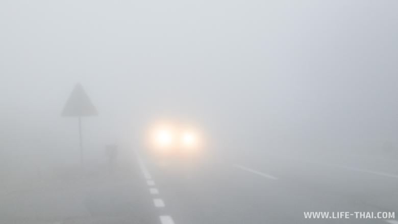 Зимой в Черногории много дождей и туманов