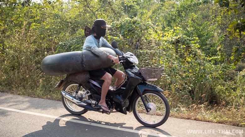 Чего только не увидишь на тайских дорогах