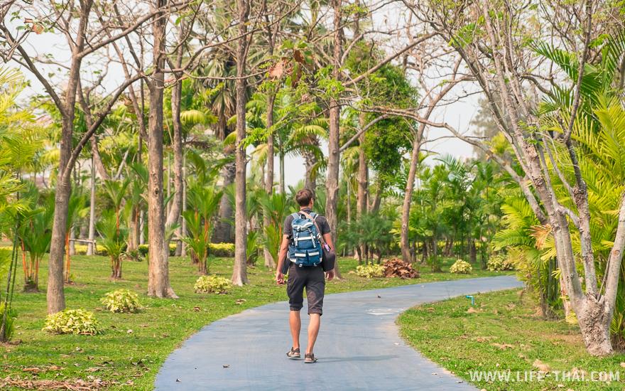 Игорь гуляет по парку Праджак