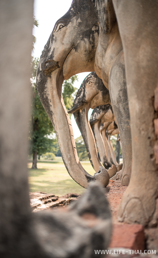 Слоны в ряд