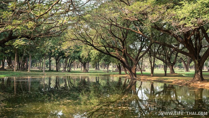 Парк для прогулок в центральной части старого города Сукотая