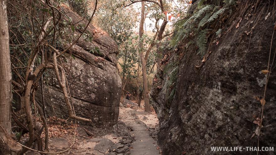 Несколько тысяч лет назад по этой дороге ходили первые люди