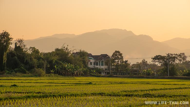 Дом в рисовых полях по дороге к озеру в Чиангмае