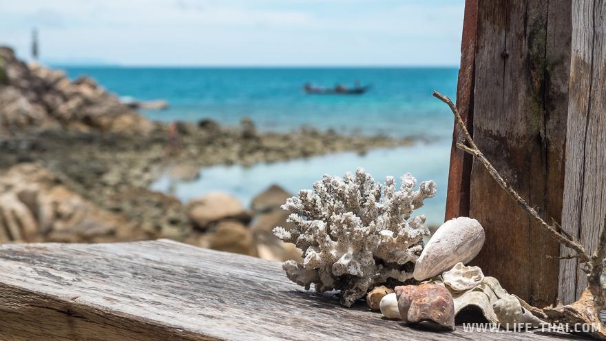 Корал бич подходит для сноркелинга