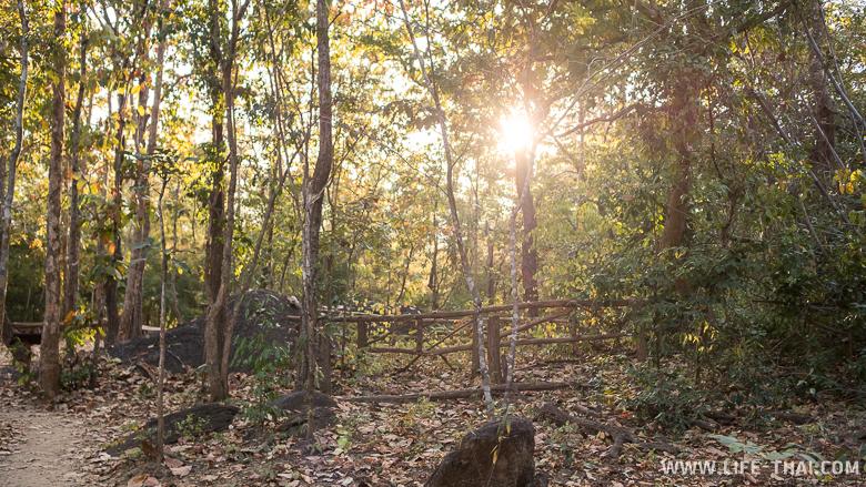 Забором огорожено одно из мест стоянки древних людей