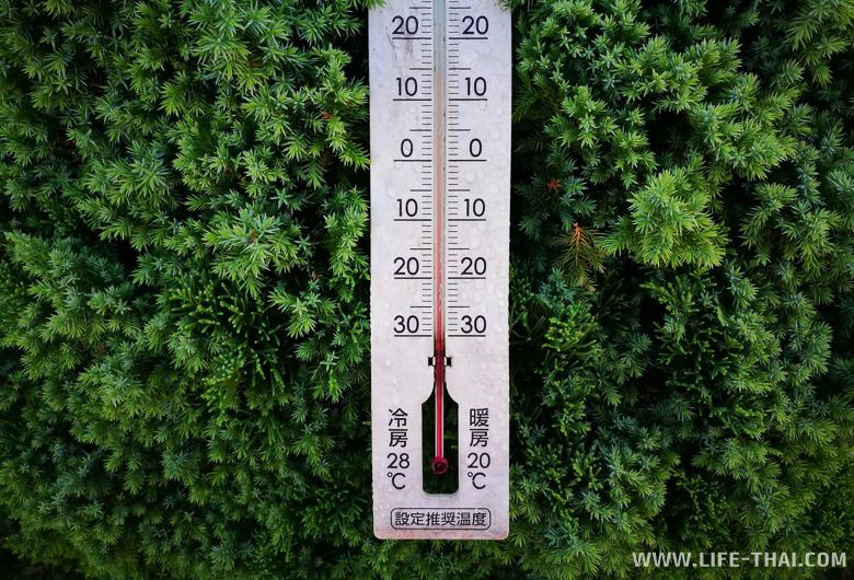 Температура в горах на севере Таиланда низкая, стоит одеваться тепло и брать с собой тёплую одежду