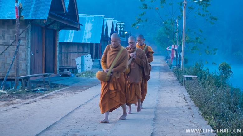 Монахи на рассвете собирают подаяния в Бан Рак Таи