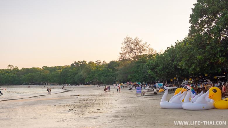 Обзор пляжа Вонг Дуан - идеален для отдыха с детьми