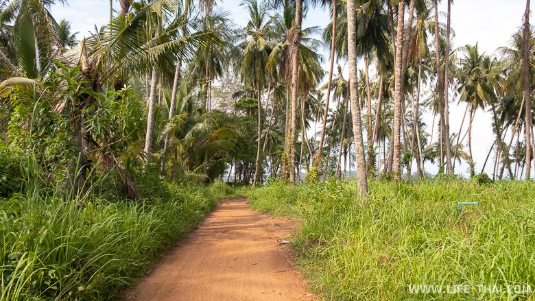 Дороги на острове Мак