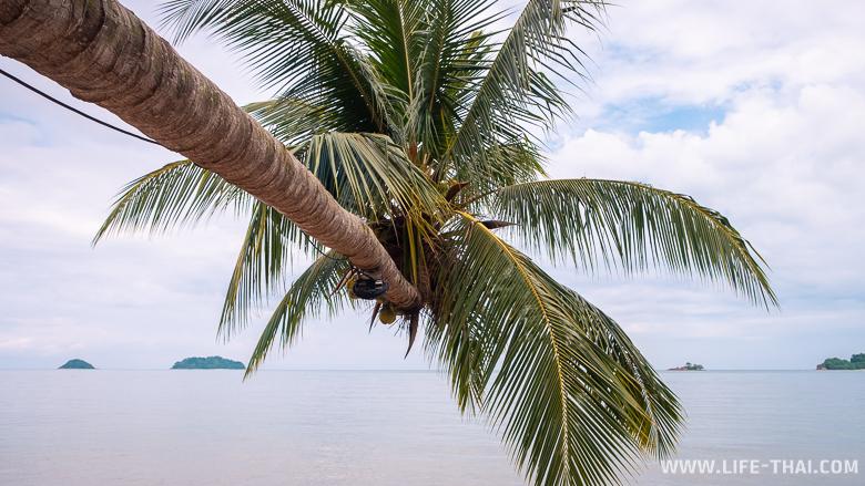 Пляж Кай Бае на ко Чанге - один из самых красивых пляжей острова