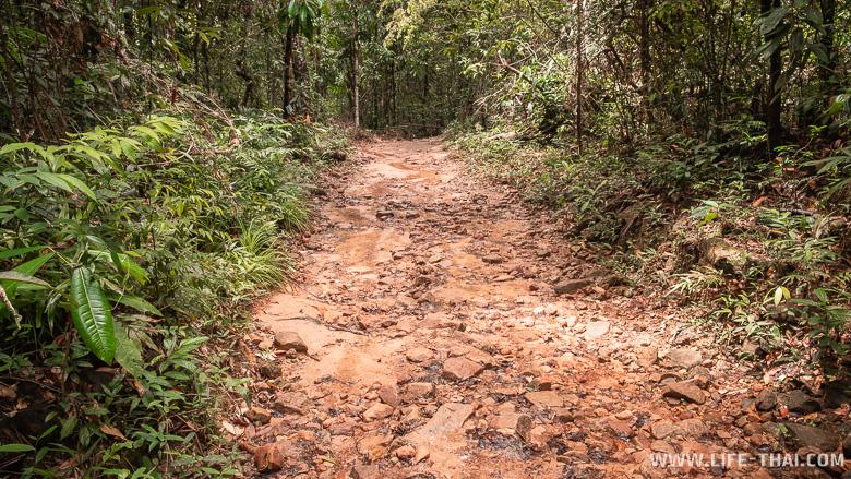 Дорога к водопаду Klong Chao Waterfall на ко Куде