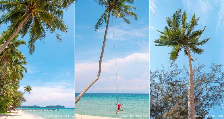 Я и пальмы на лучшем пляже ко Куда