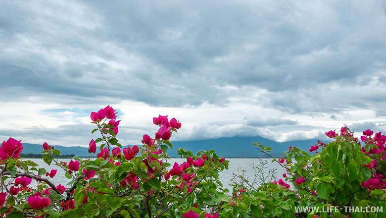 Озеро Пхаяо