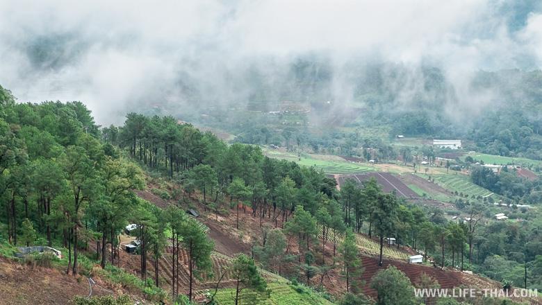 Распаханные склоны в Дой Интанон