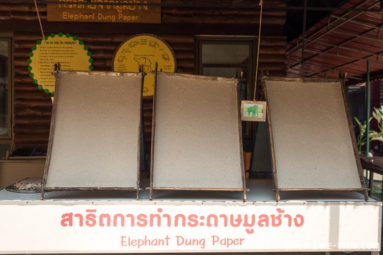 Бумаг из слоновьего помёта, Таиланд
