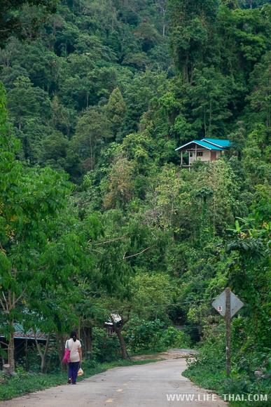 Деревня Ban Mae Mae рядом с Чианг Дао