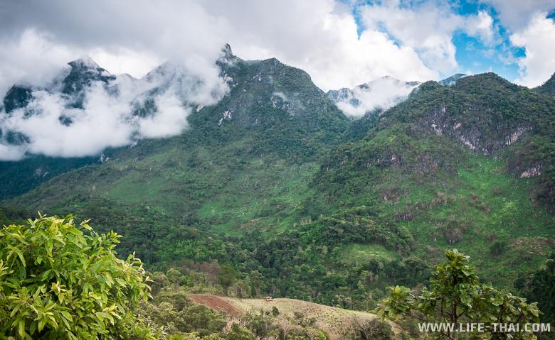 Гора Дои Луанг Чианг Дао - что посмотреть в Чианг Дао