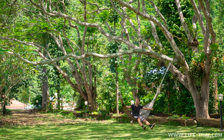 Игорь чиллит в гамаке в Чианг Дао, Таиланд