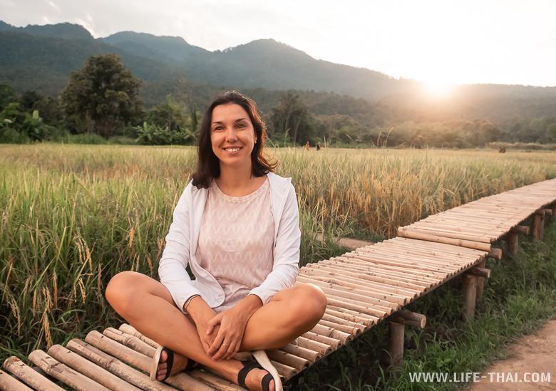 Рисовые поля в Чиангмае